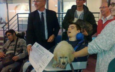 Le crédit agricole de Normandie – Partenaire de Syrius Médiation Canine