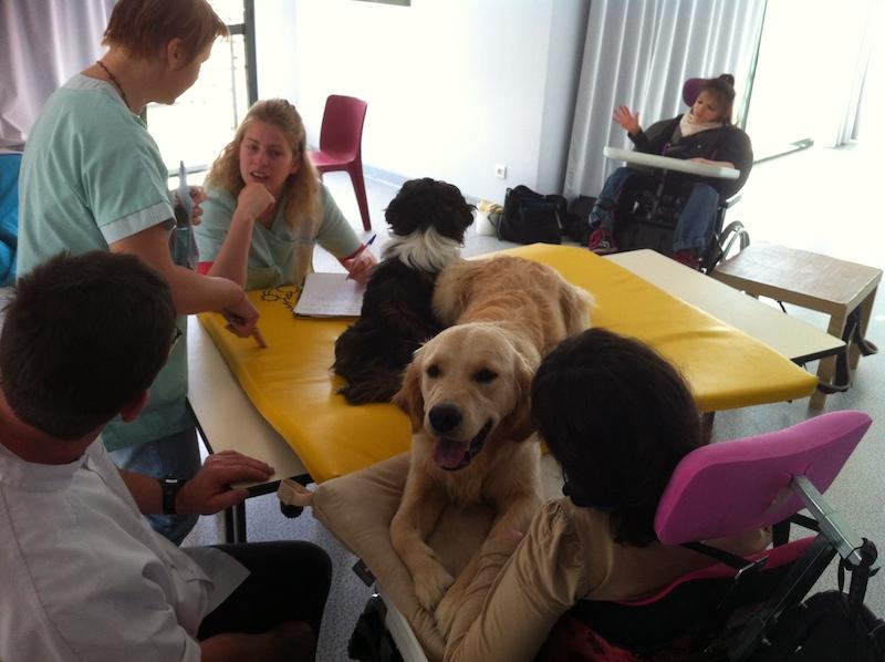 Reportage sur la médiation Canine dans une EHPAD