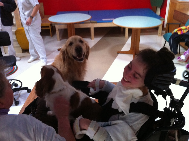 Reportage sur la médiation animale Hôpital de la Roche Guyon